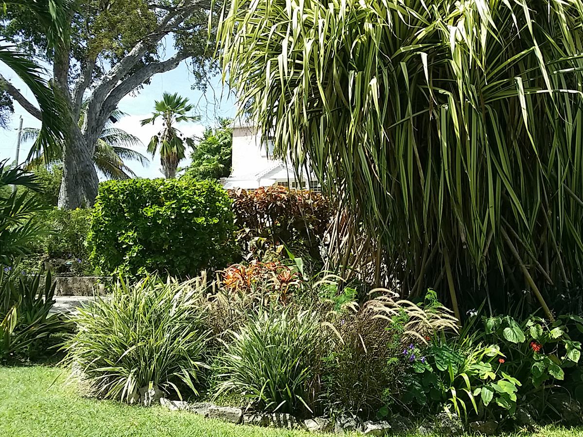 Golden Grove House and Garden
