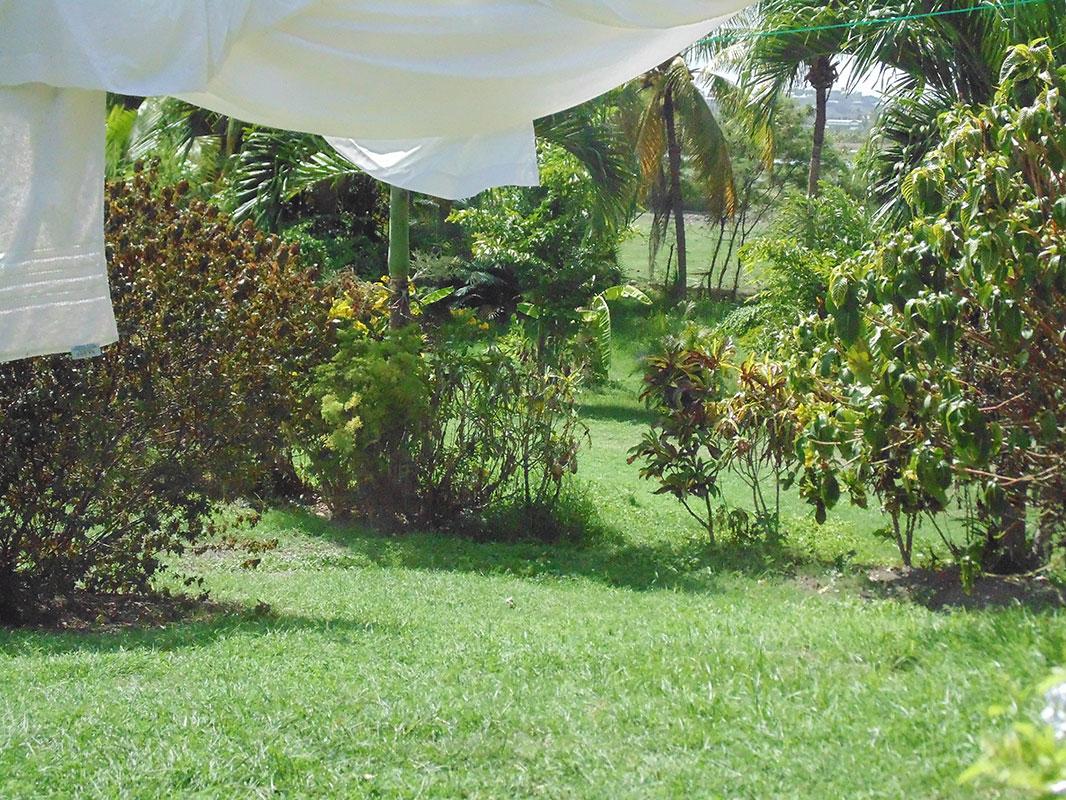 Golden Grove Great House Garden