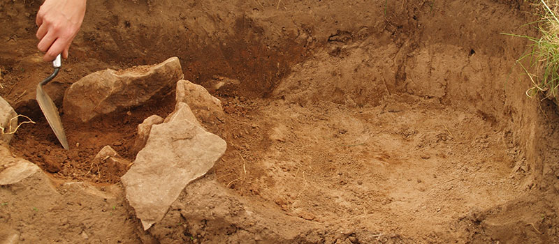 archaeologist work golden grove